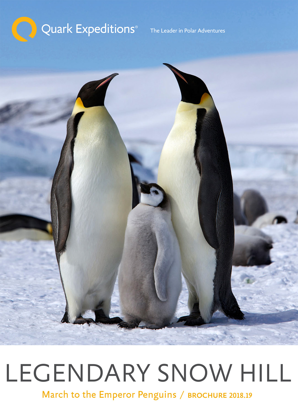 Legendary Snow Hill March to the Emperor Penguins