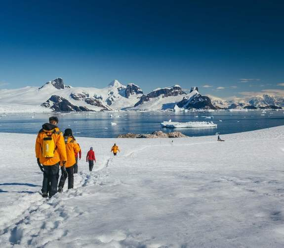 Passengers hiking in Antarctic Landscape