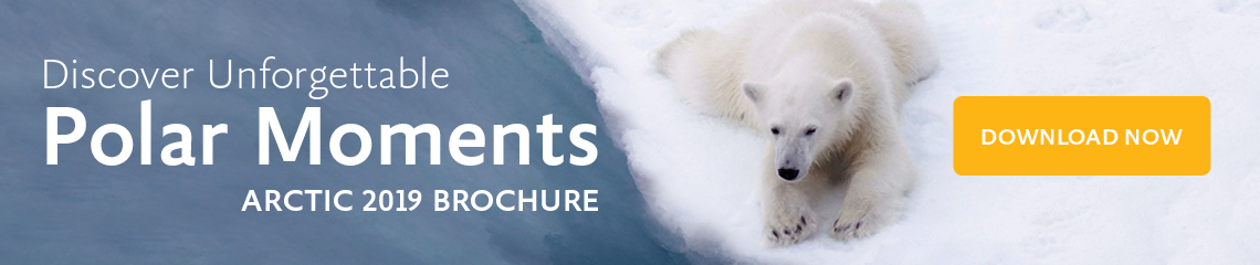 Discover Unforgettable Arctic Moments 2019 - Download Now